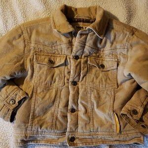 Toddler boys winter timberland coat